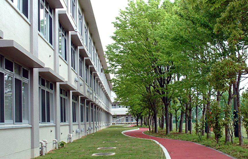 校舎と校庭に続く道